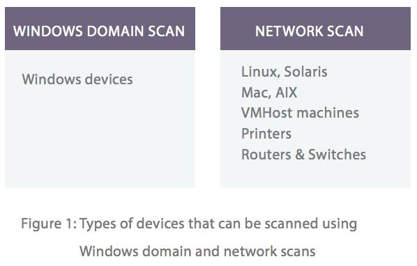 Network asset management system