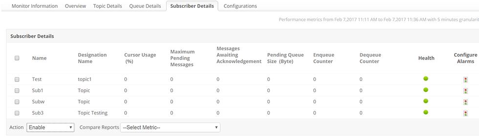 ActiveMQ Subscriber Details