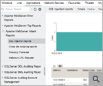 Report attacchi del server Web Apache