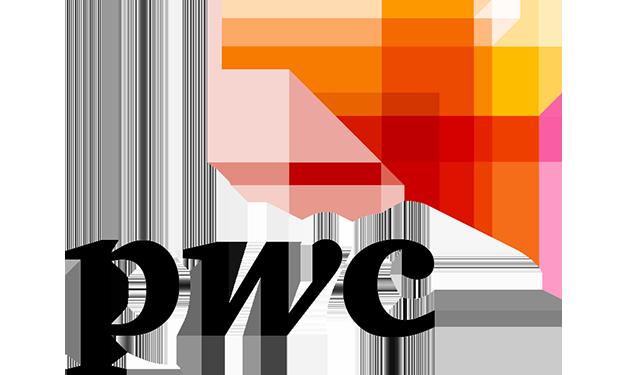Logo pwc2
