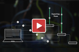 How to export flow with NetFlow Analyzer?
