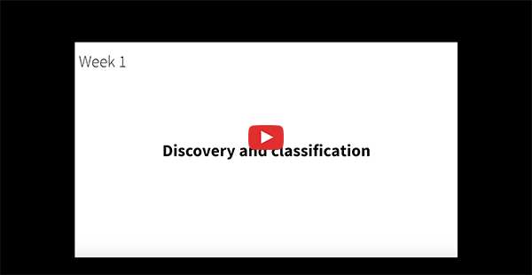 Discovery and classification in OpManager