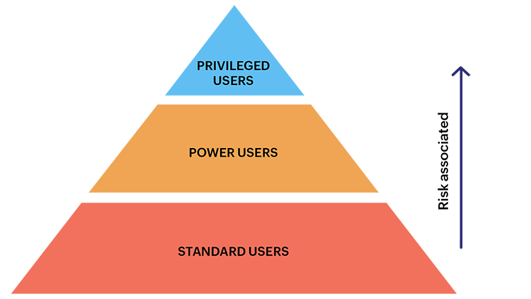 types of enterprise IT users - privileged user