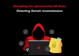 icon-wp-detect-domain-recon-guide