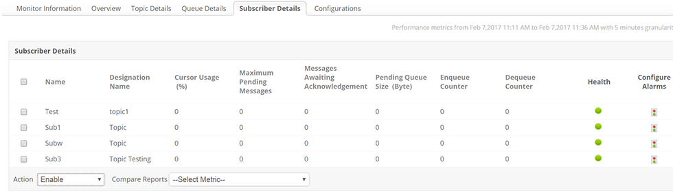 ActiveMQ Subscriber Details