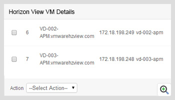 Horizon View VM Details
