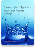 Business Impact of Application Performance Problems