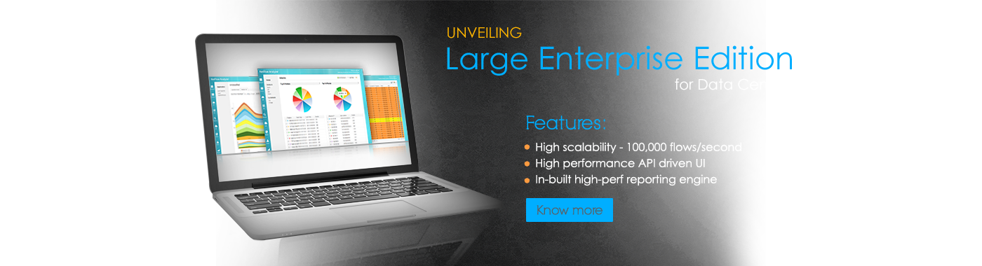 Large Enterprise Edition