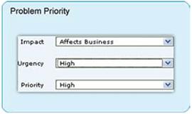 Problem priority matrix