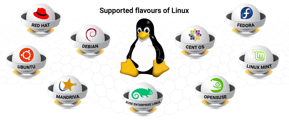 Linux remote desktop software - ManageEngine Remote Access Plus