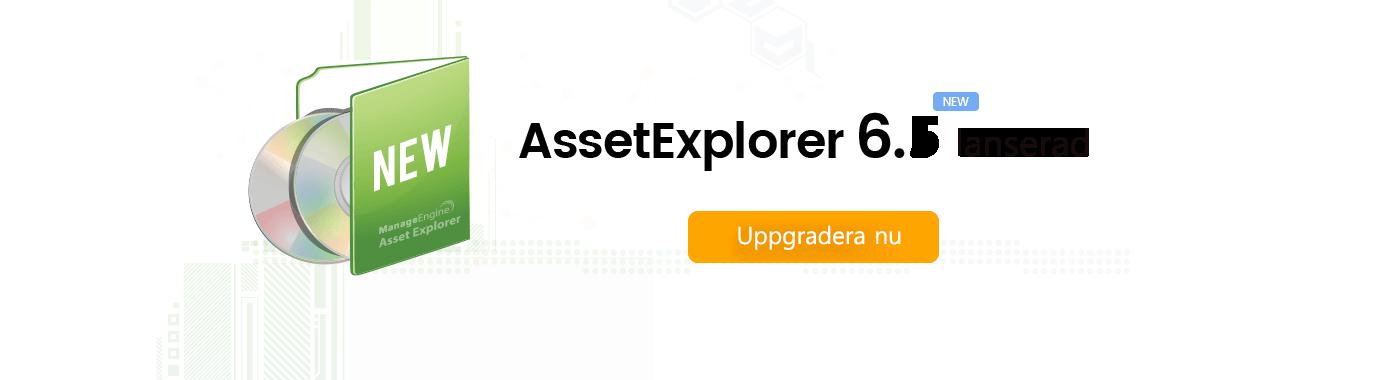 ManageEngine AssetExplorer 6.2 lanserad